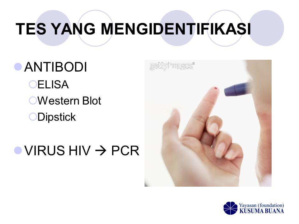 TES YANG MENGIDENTIFIKASI  ANTIBODI  ELISA  Western Blot  Dipstick  VIRUS HIV  PCR