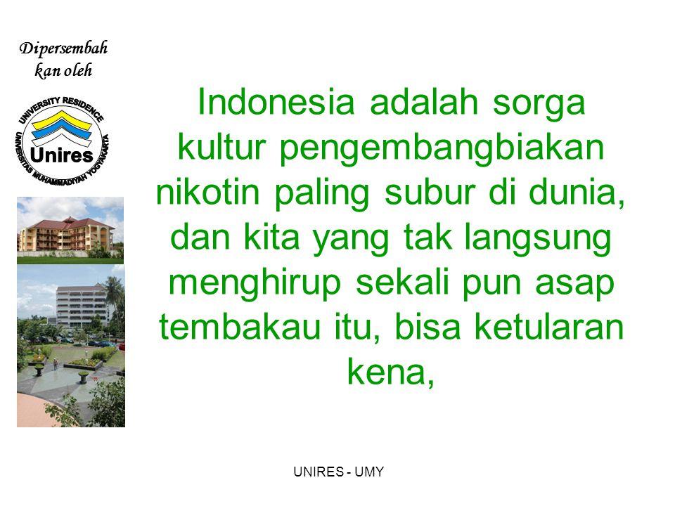 Dipersembah kan oleh UNIRES - UMY Indonesia adalah sorga kultur pengembangbiakan nikotin paling subur di dunia, dan kita yang tak langsung menghirup sekali pun asap tembakau itu, bisa ketularan kena,