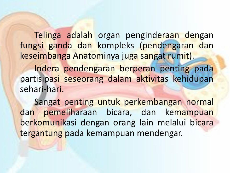 Telinga adalah organ penginderaan dengan fungsi ganda dan kompleks (pendengaran dan keseimbanga Anatominya juga sangat rumit). Indera pendengaran berp