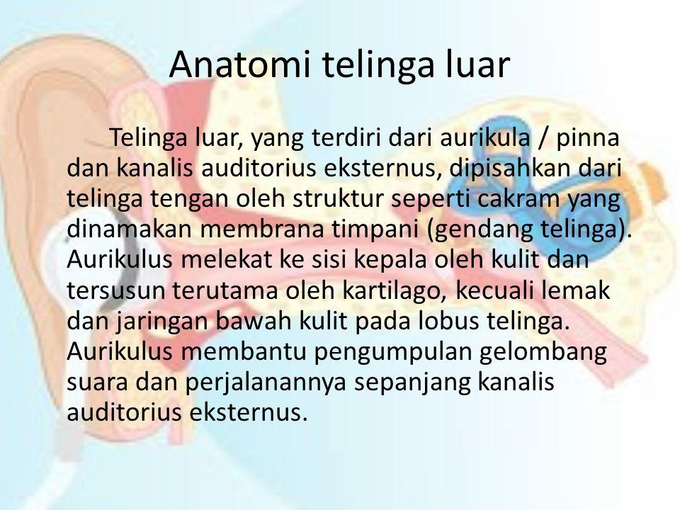 Anatomi telinga luar Telinga luar, yang terdiri dari aurikula / pinna dan kanalis auditorius eksternus, dipisahkan dari telinga tengan oleh struktur s