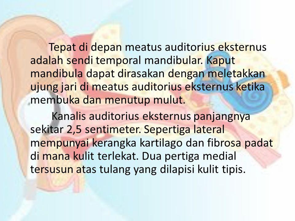Kanalis auditorius eksternus berakhir pada membrana timpani.
