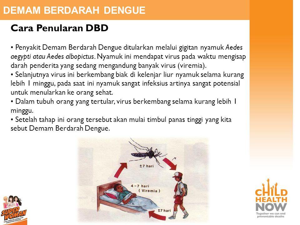 DEMAM BERDARAH DENGUE Cara Penularan DBD • Penyakit Demam Berdarah Dengue ditularkan melalui gigitan nyamuk Aedes aegypti atau Aedes albopictus. Nyamu