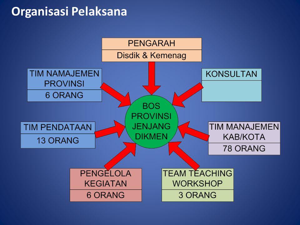 Organisasi Pelaksana