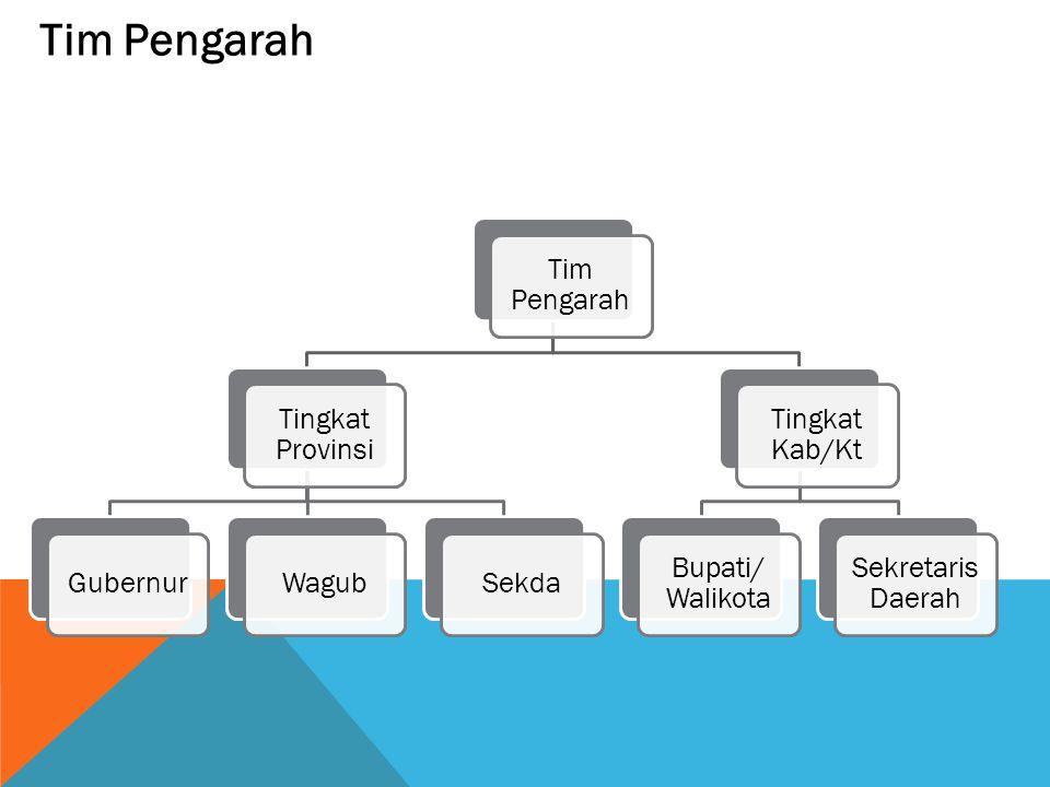 Tim Pengarah Tingkat Provinsi GubernurWagubSekda Tingkat Kab/Kt Bupati/ Walikota Sekretaris Daerah