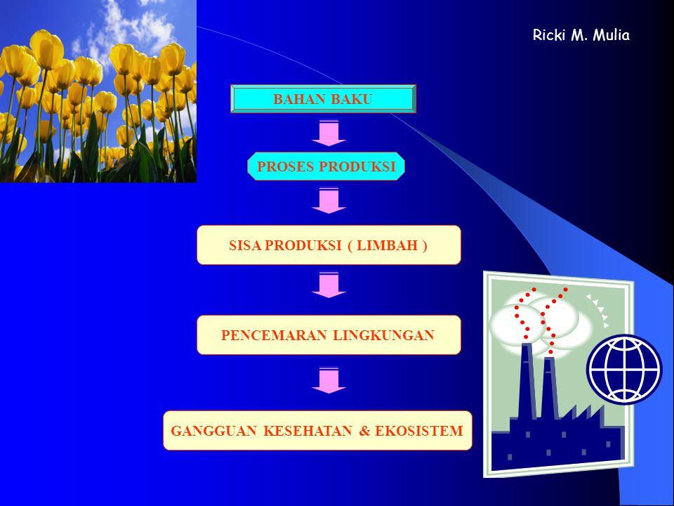 BAHAN BAKUPROSES PRODUKSI SISA PRODUKSI ( LIMBAH ) Ricki M. Mulia PENCEMARAN LINGKUNGAN GANGGUAN KESEHATAN & EKOSISTEM
