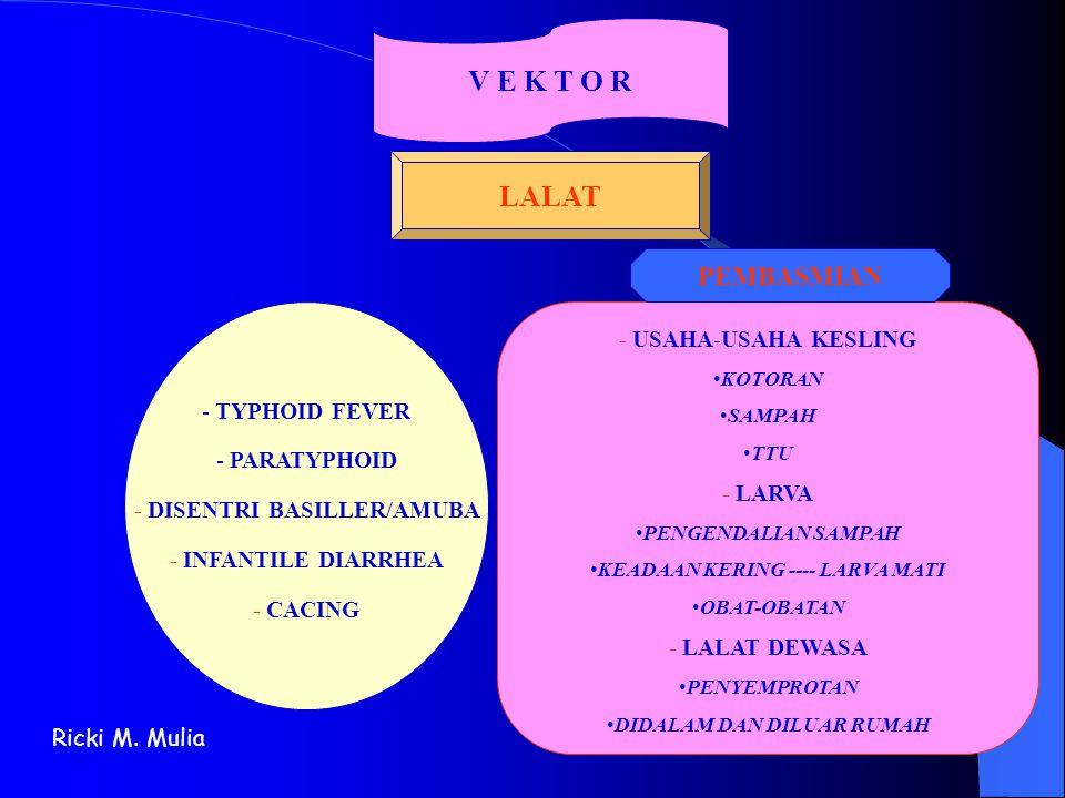 V E K T O R LALAT - TYPHOID FEVER - PARATYPHOID - DISENTRI BASILLER/AMUBA - INFANTILE DIARRHEA - CACING - USAHA-USAHA KESLING •KOTORAN •SAMPAH •TTU -
