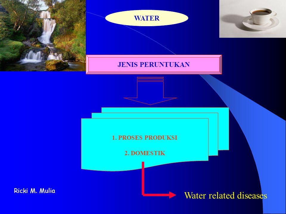 Ricki M Mulia WATER RELATED DISEASES • Penyakit tidak menular Contoh : Minamata Disease, Itai-itai Agent : bukan mikroorganisme patogen Penyakit menular yang disebarkan oleh air secara langsung di antara masyarakat ( sering juga disebut water-borne disease). • Penyakit menular Contoh : Cholera (Vibrio Cholerae), Dysentrie Amoeba (Entamoeba hystolitica) Agent : umumnya mikroorganisme patogen