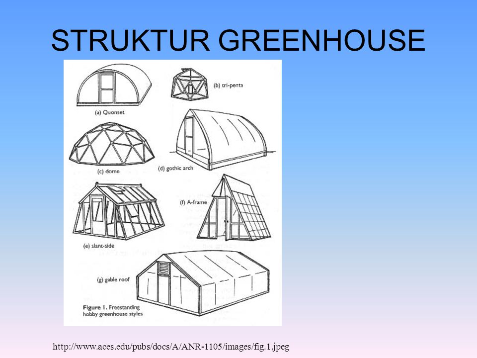 STRUKTUR GREENHOUSE http://www.aces.edu/pubs/docs/A/ANR-1105/images/fig.1.jpeg