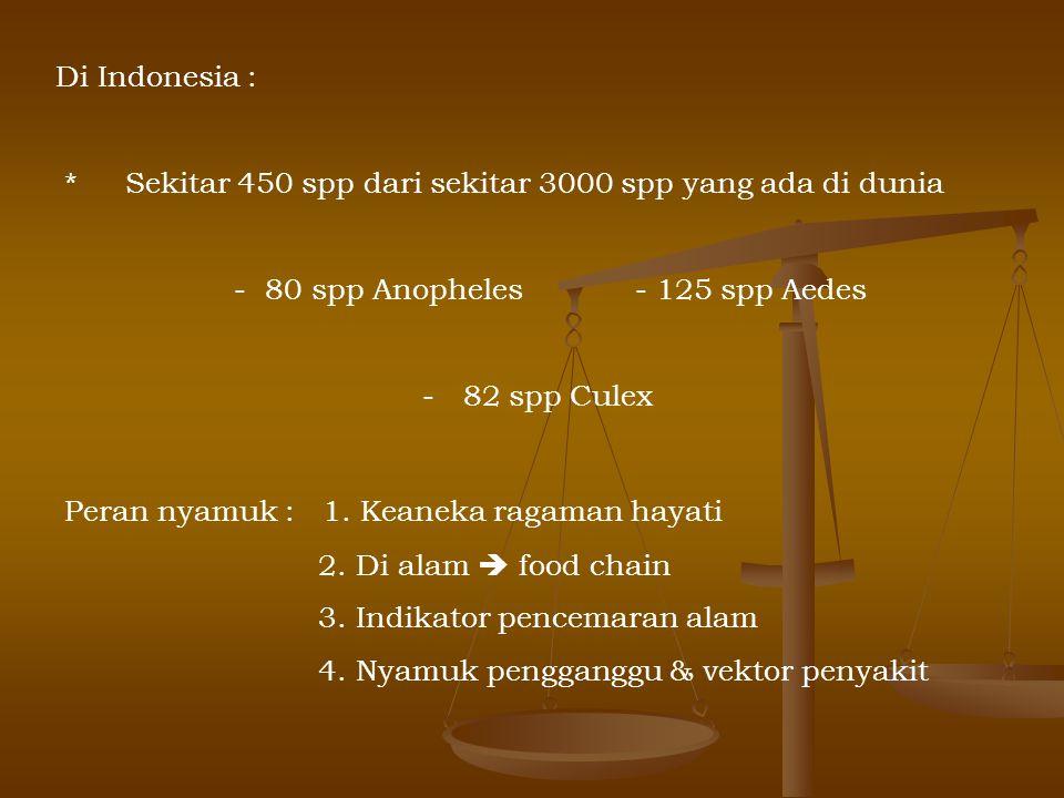 Di Indonesia : * Sekitar 450 spp dari sekitar 3000 spp yang ada di dunia - 80 spp Anopheles - 125 spp Aedes - 82 spp Culex Peran nyamuk : 1. Keaneka r