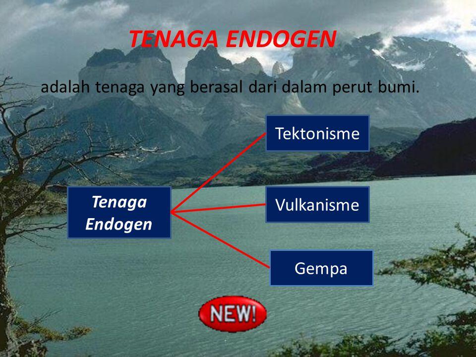 TENAGA ENDOGEN adalah tenaga yang berasal dari dalam perut bumi. Gempa Tektonisme Vulkanisme Tenaga Endogen