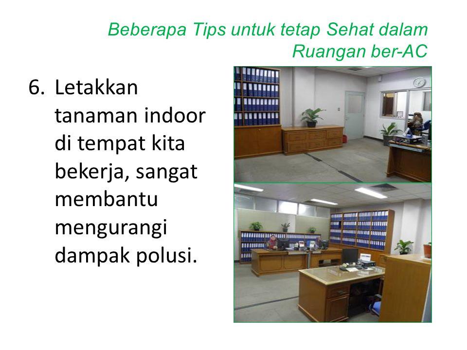 6.Letakkan tanaman indoor di tempat kita bekerja, sangat membantu mengurangi dampak polusi. Beberapa Tips untuk tetap Sehat dalam Ruangan ber-AC