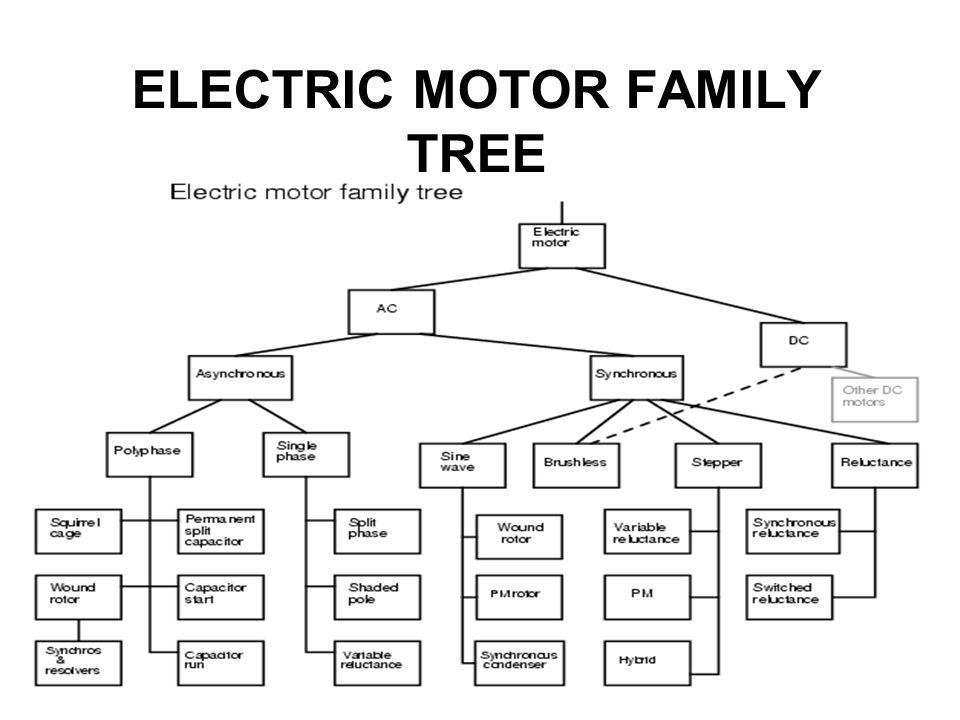 ELECTRIC MOTOR FAMILY TREE