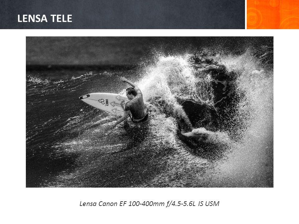 Lensa Canon EF 100-400mm f/4.5-5.6L IS USM