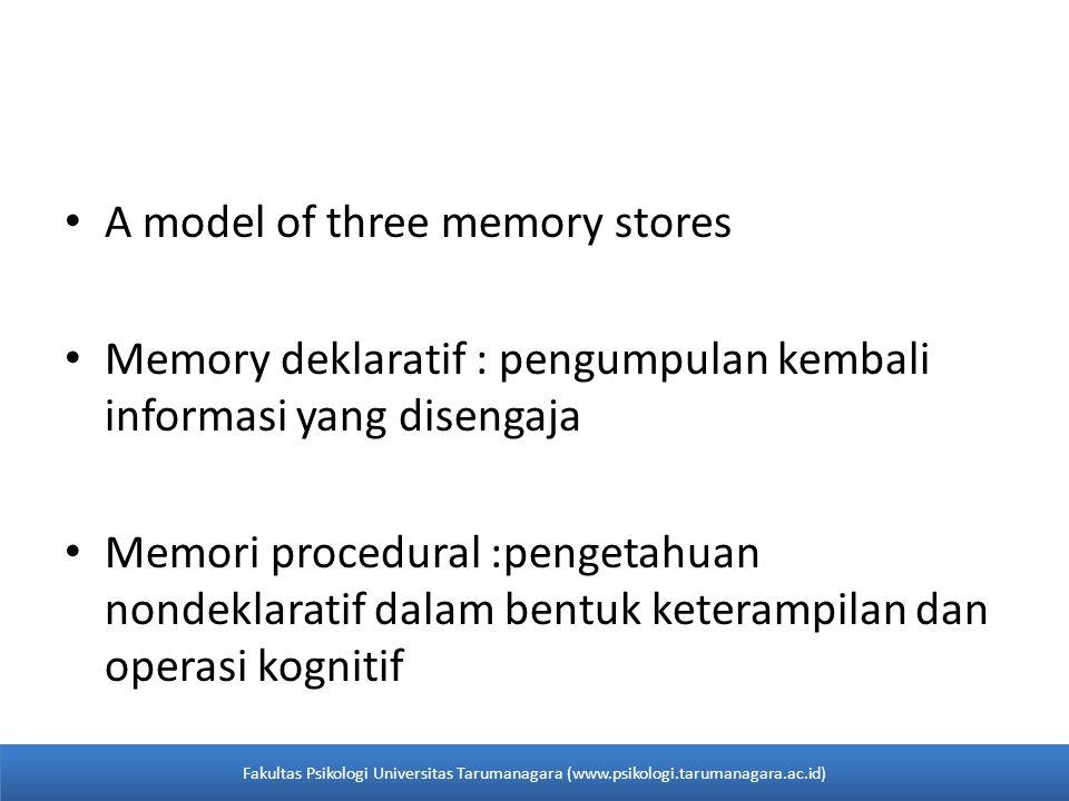 • A model of three memory stores • Memory deklaratif : pengumpulan kembali informasi yang disengaja • Memori procedural :pengetahuan nondeklaratif dal