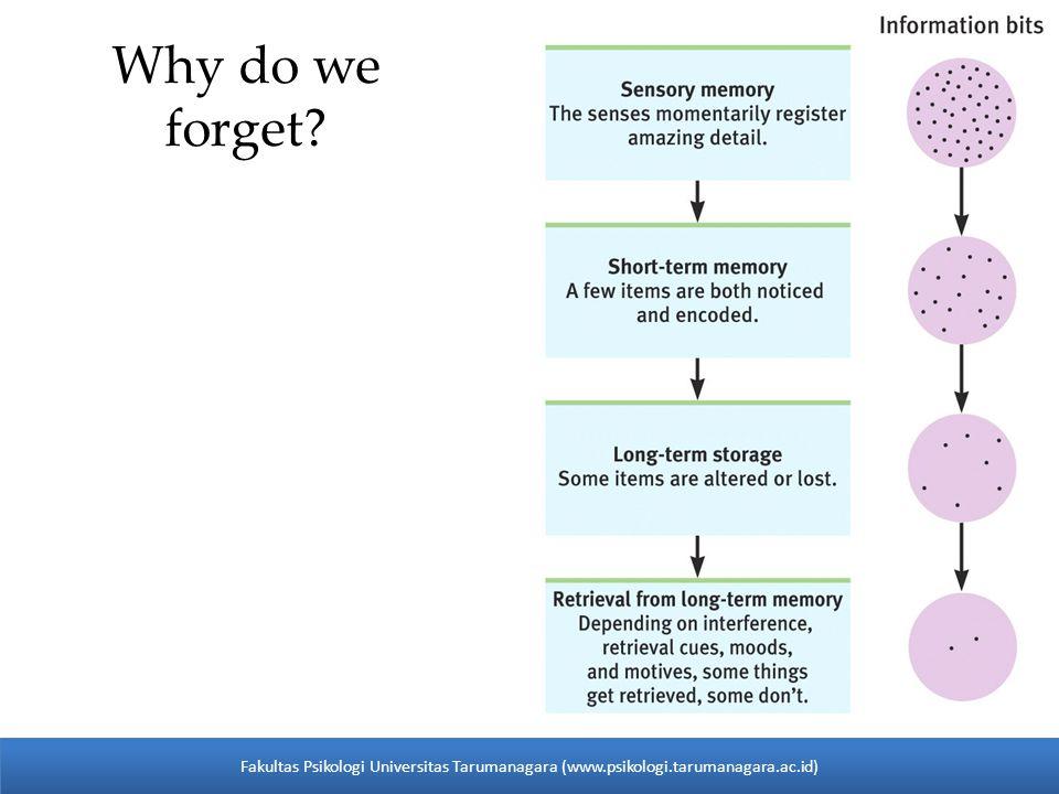 Why do we forget? 27 Fakultas Psikologi Universitas Tarumanagara (www.psikologi.tarumanagara.ac.id)