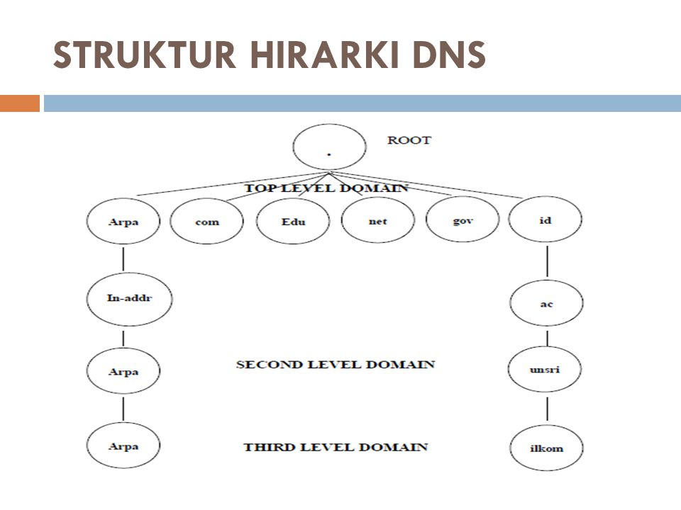 STRUKTUR HIRARKI DNS