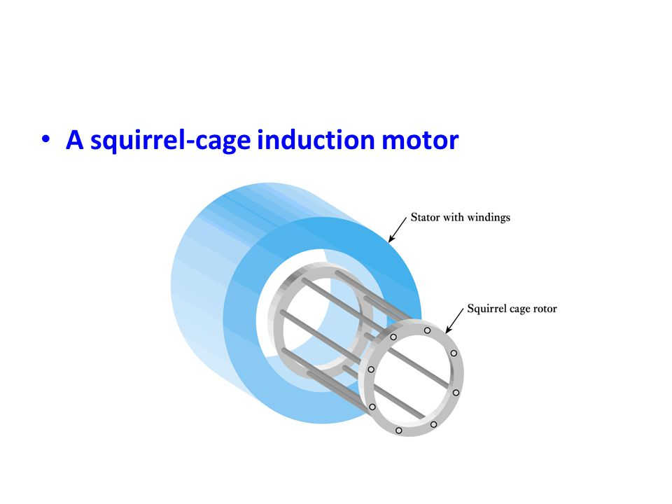 • A squirrel-cage induction motor
