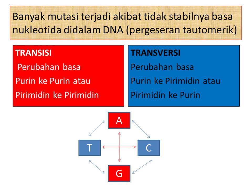 Mutasi Berdasarkan Sel yang Bermutasi Mutasi somatik adalah mutasi yang terjadi pada sel somatik.