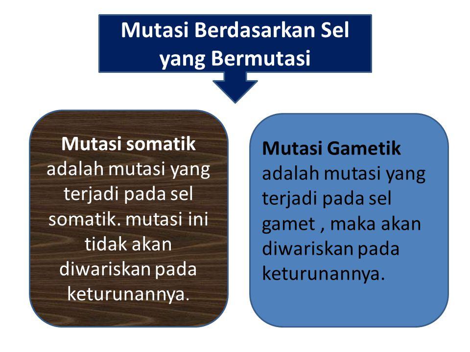 Mutasi Berdasarkan Sel yang Bermutasi Mutasi somatik adalah mutasi yang terjadi pada sel somatik. mutasi ini tidak akan diwariskan pada keturunannya.