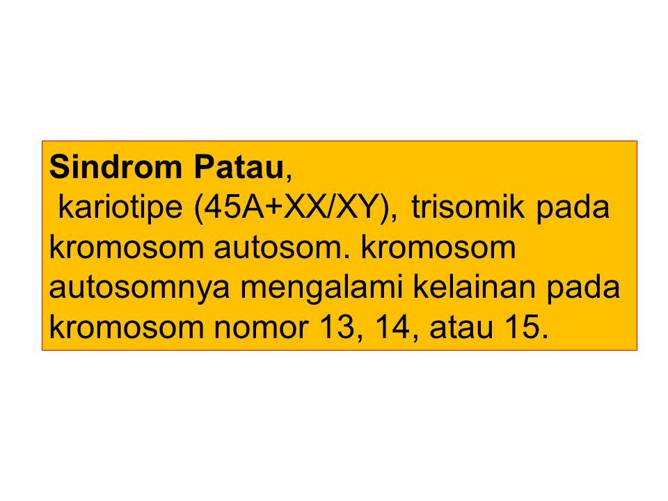 Sindrom Patau, kariotipe (45A+XX/XY), trisomik pada kromosom autosom. kromosom autosomnya mengalami kelainan pada kromosom nomor 13, 14, atau 15.