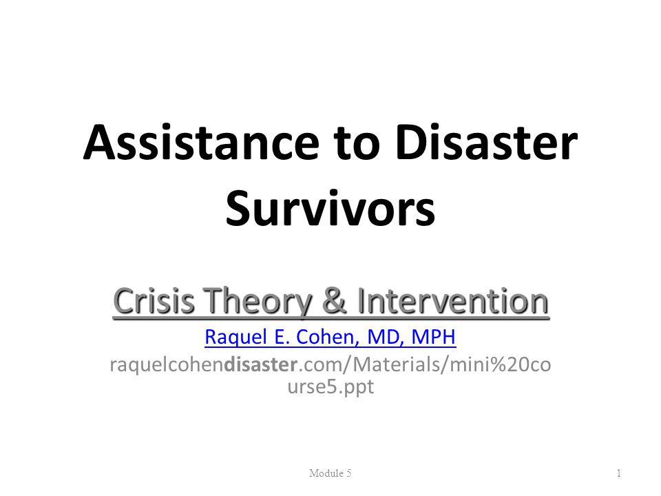 Assistance to Disaster Survivors Crisis Theory & Intervention Raquel E.