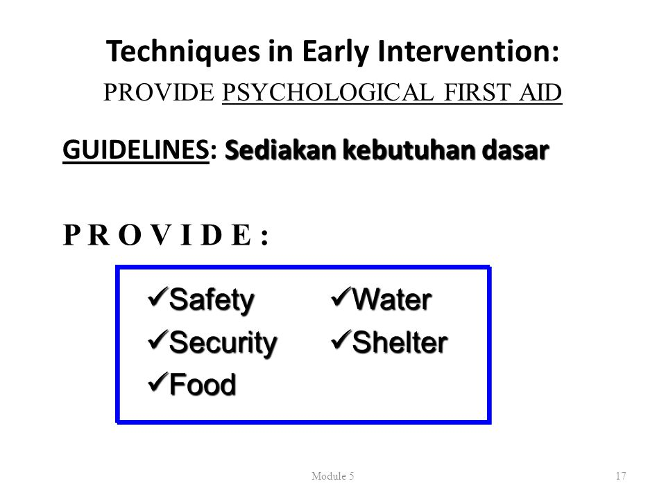 Techniques in Early Intervention: Sediakan kebutuhan dasar GUIDELINES: Sediakan kebutuhan dasar Module 517 PROVIDE PSYCHOLOGICAL FIRST AID  Safety  Security  Food  Water  Shelter P R O V I D E :