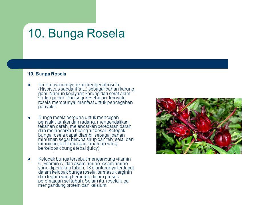 10. Bunga Rosela  Umumnya masyarakat mengenal rosela (Hisbiscus sabdariffa L.) sebagai bahan karung goni. Namun kejayaan karung dari serat alam sudah