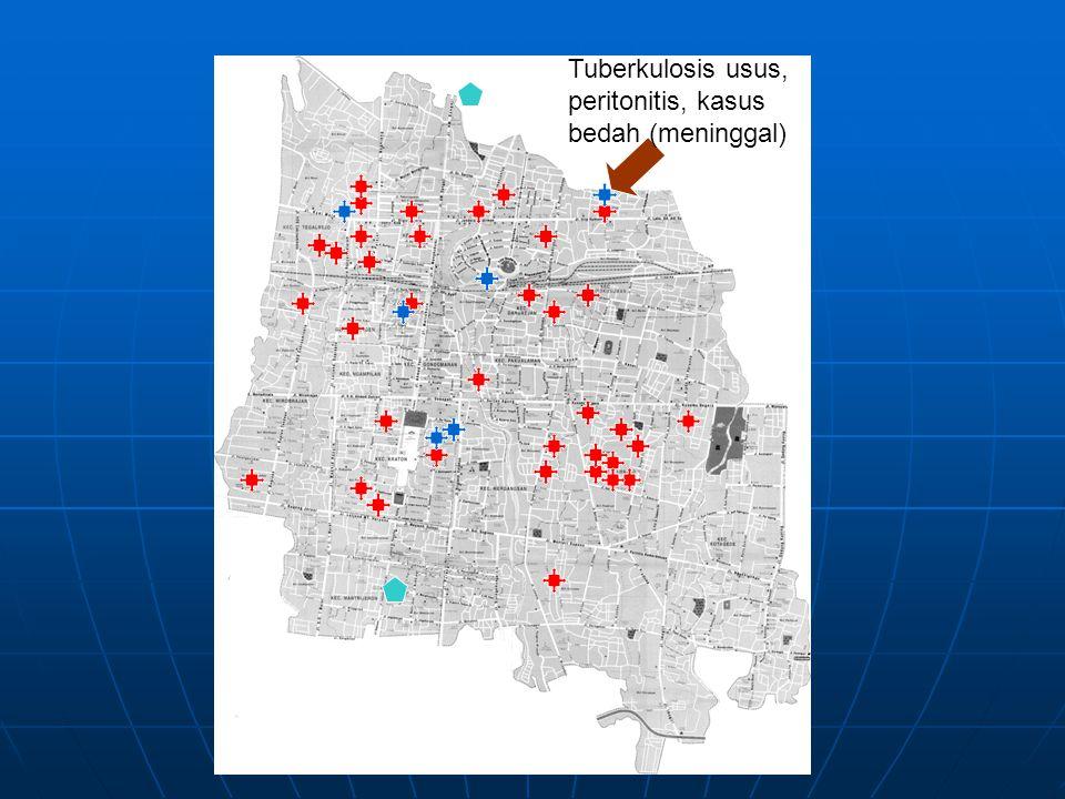 Tuberkulosis usus, peritonitis, kasus bedah (meninggal)