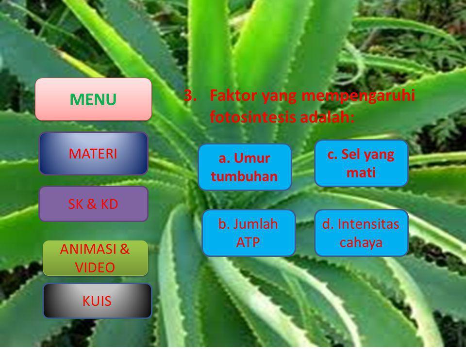 MENU MATERI ANIMASI & VIDEO ANIMASI & VIDEO KUIS SK & KD 3.Faktor yang mempengaruhi fotosintesis adalah: a. Umur tumbuhan b. Jumlah ATP d. Intensitas