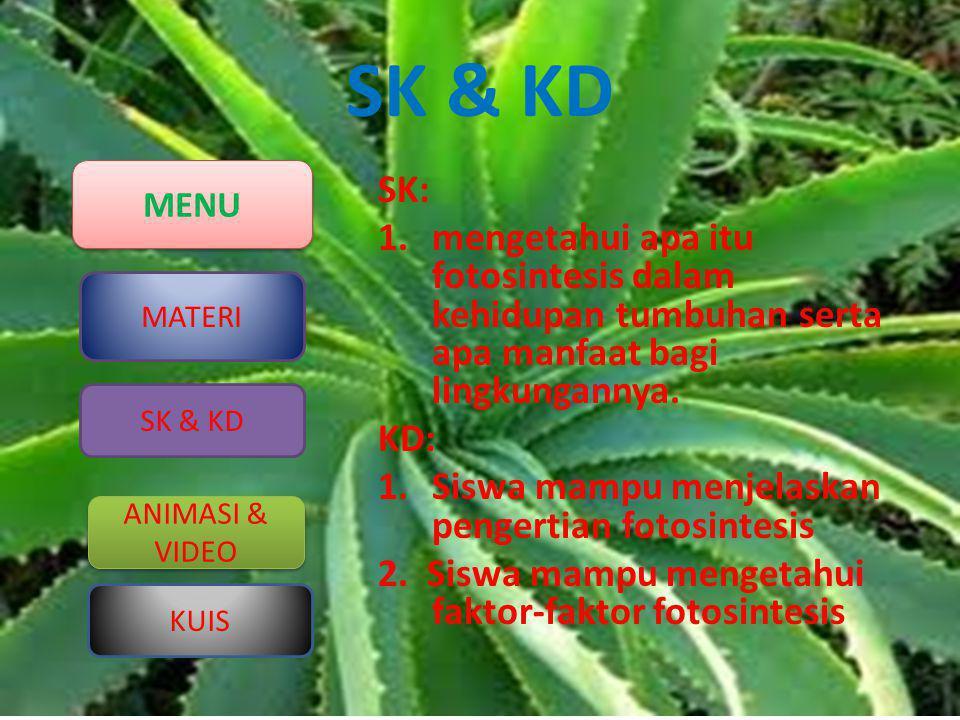 MENU MATERI ANIMASI & VIDEO ANIMASI & VIDEO KUIS SK & KD SK: 1.mengetahui apa itu fotosintesis dalam kehidupan tumbuhan serta apa manfaat bagi lingkun
