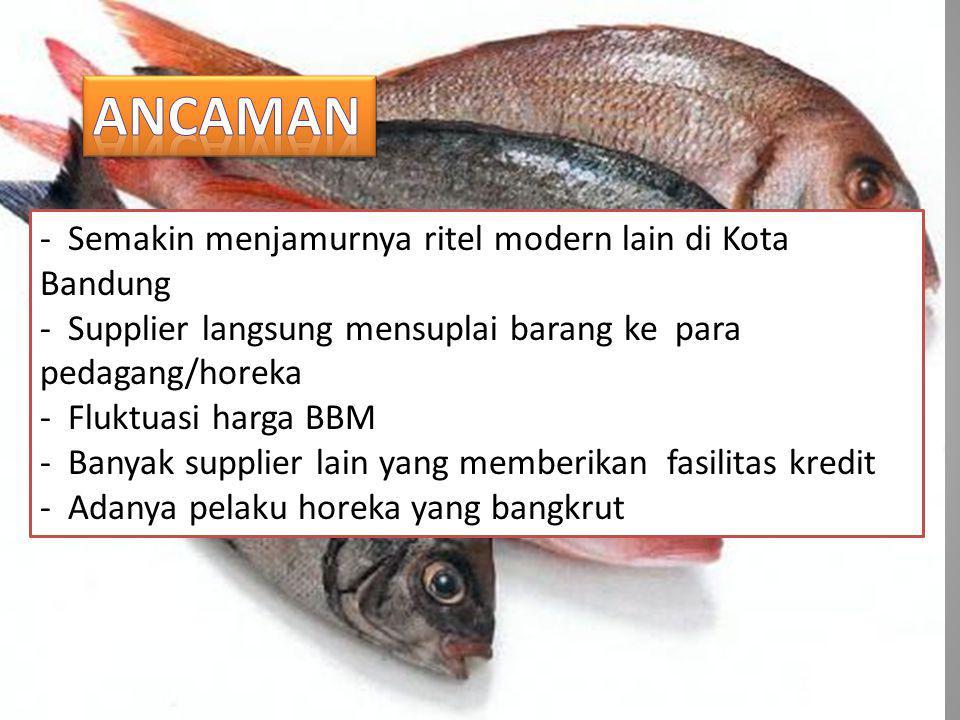- Semakin menjamurnya ritel modern lain di Kota Bandung - Supplier langsung mensuplai barang ke para pedagang/horeka - Fluktuasi harga BBM - Banyak supplier lain yang memberikan fasilitas kredit - Adanya pelaku horeka yang bangkrut