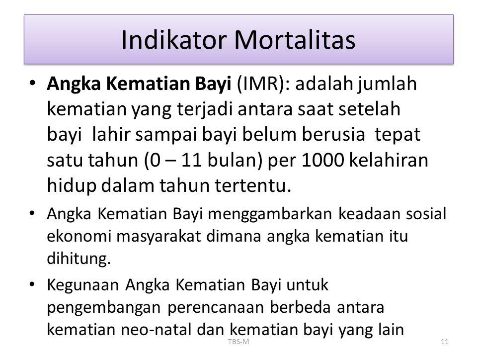 • Angka Kematian Bayi (IMR): adalah jumlah kematian yang terjadi antara saat setelah bayi lahir sampai bayi belum berusia tepat satu tahun (0 – 11 bul