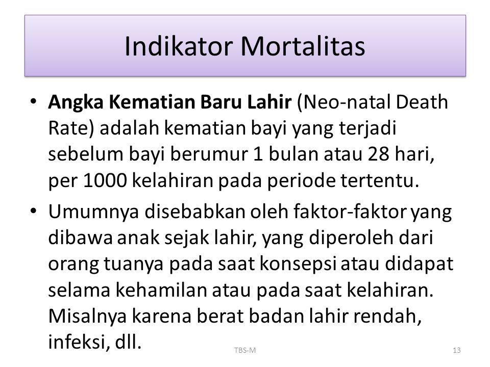 • Angka Kematian Baru Lahir (Neo-natal Death Rate) adalah kematian bayi yang terjadi sebelum bayi berumur 1 bulan atau 28 hari, per 1000 kelahiran pad