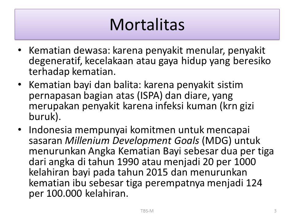 Mortalitas • Kematian dewasa: karena penyakit menular, penyakit degeneratif, kecelakaan atau gaya hidup yang beresiko terhadap kematian. • Kematian ba
