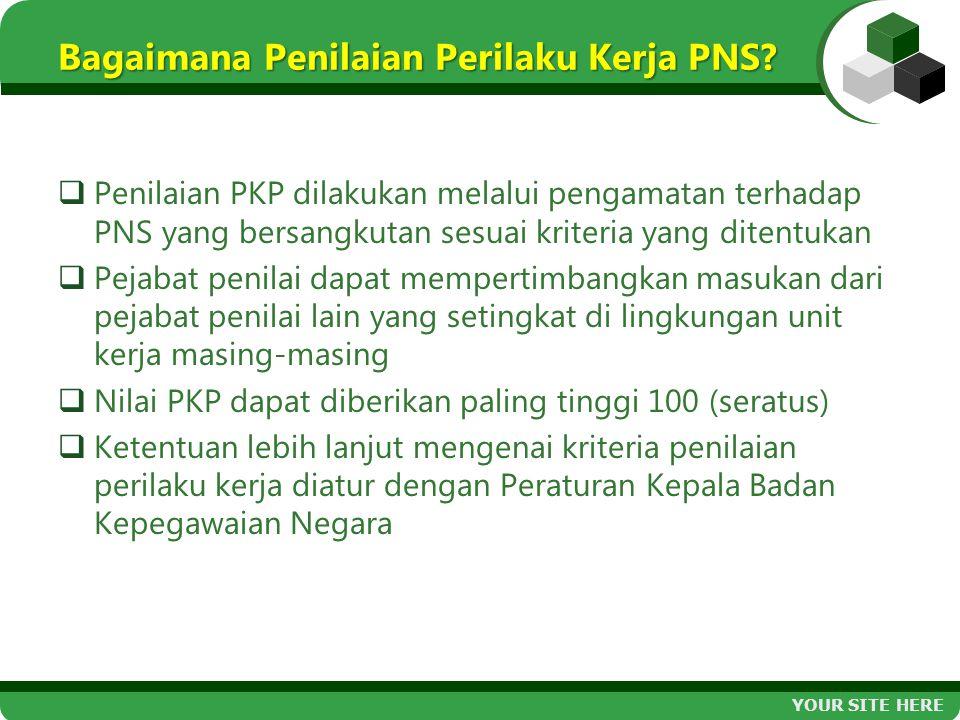 Bagaimana Penilaian Perilaku Kerja PNS?  Penilaian PKP dilakukan melalui pengamatan terhadap PNS yang bersangkutan sesuai kriteria yang ditentukan 