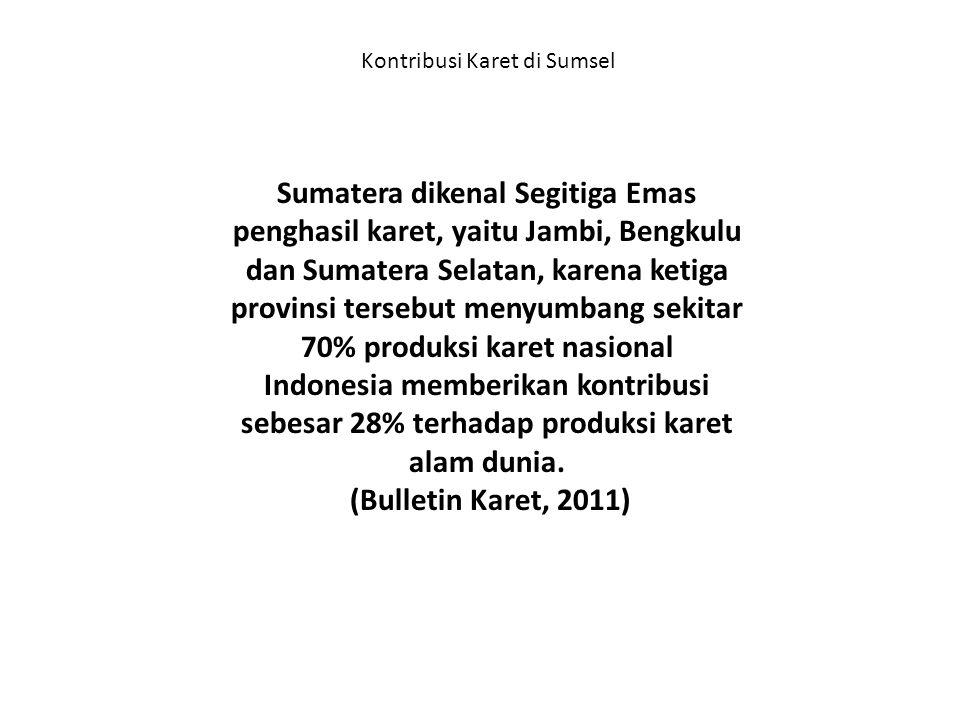 Kontribusi Karet di Sumsel Sumatera dikenal Segitiga Emas penghasil karet, yaitu Jambi, Bengkulu dan Sumatera Selatan, karena ketiga provinsi tersebut