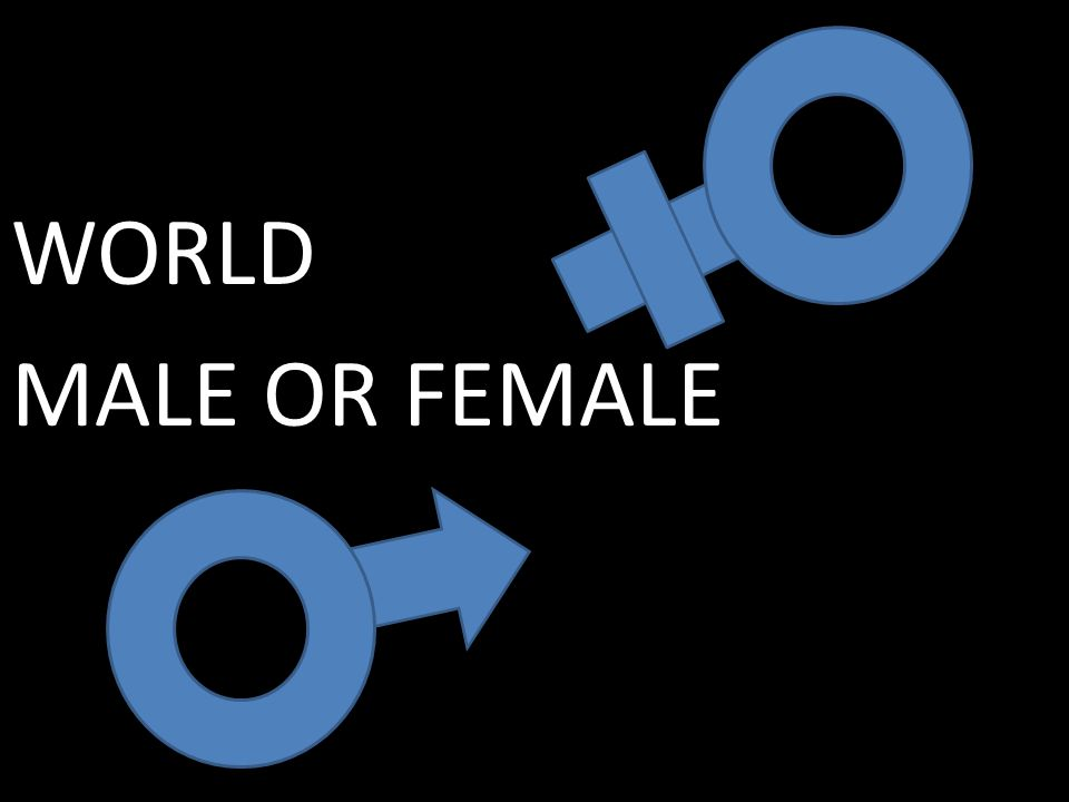 WORLD MALE OR FEMALE