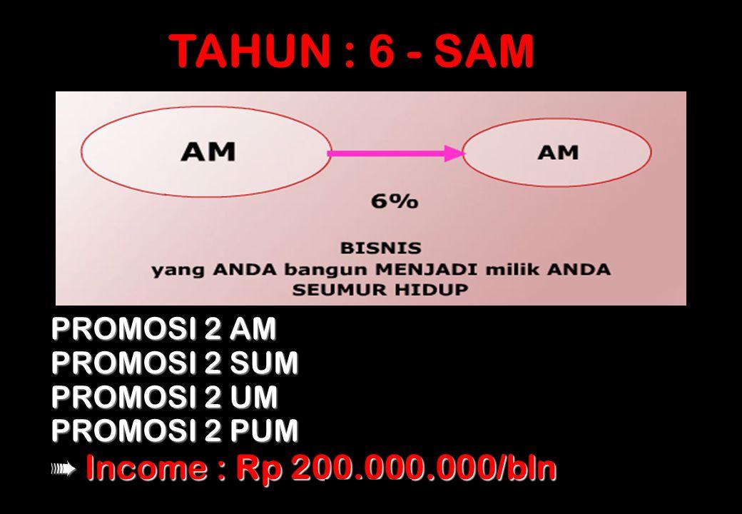 pruSPIRIT TAHUN : 6 - SAM PROMOSI 2 AM PROMOSI 2 SUM PROMOSI 2 UM PROMOSI 2 PUM ➠ Income : Rp 200.000.000/bln