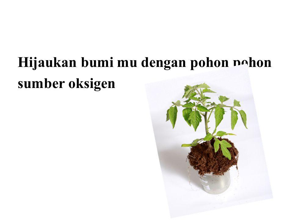 Hijaukan bumi mu dengan pohon pohon sumber oksigen