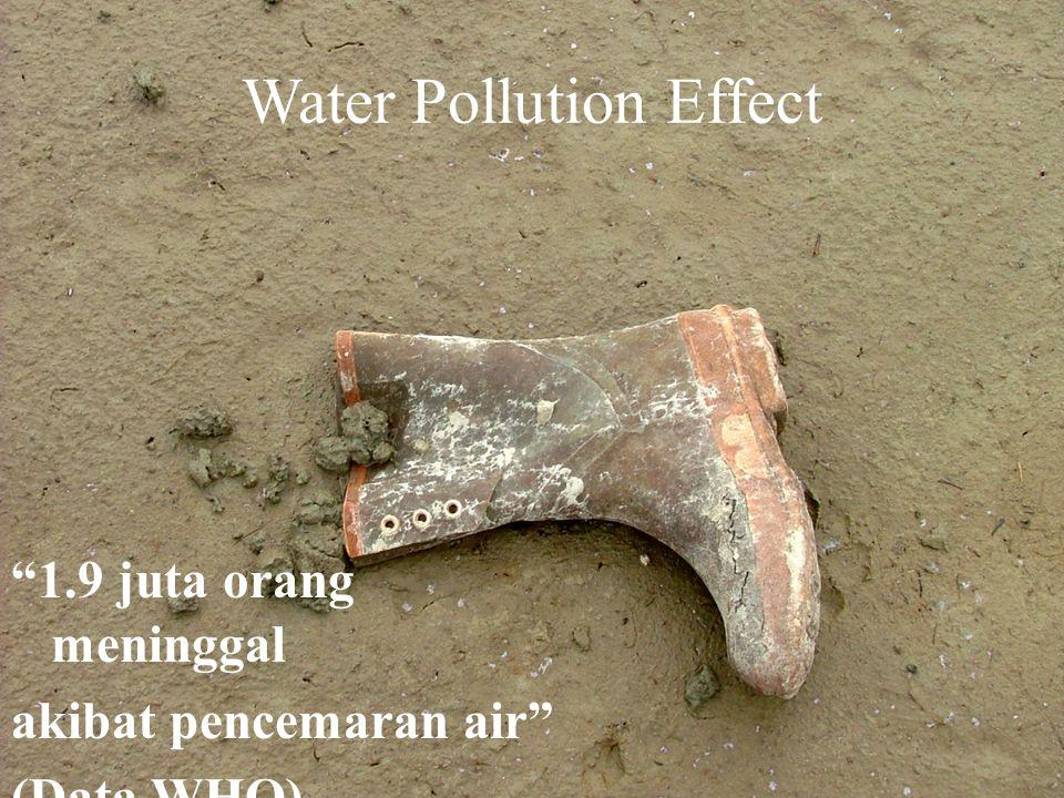 Poisoned Death People 25% Kematian di dunia adalah dampak dari pencemaran lingkungan (Data WHO)