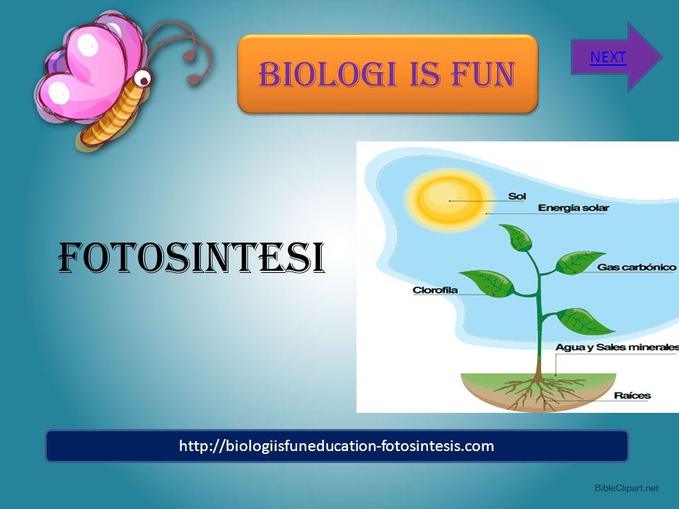 BIOLOGI IS FUN FOTOSINTESI http://biologiisfuneducation-fotosintesis.com NEXT