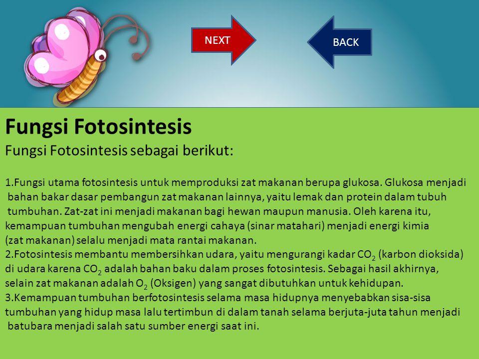 BACK Fungsi Fotosintesis Fungsi Fotosintesis sebagai berikut: 1.Fungsi utama fotosintesis untuk memproduksi zat makanan berupa glukosa. Glukosa menjad