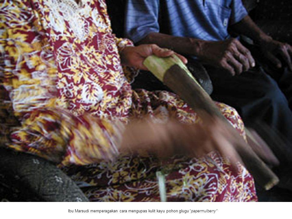 """Ibu Marsudi memperagakan cara mengupas kulit kayu pohon glugu """"papermulberry"""""""