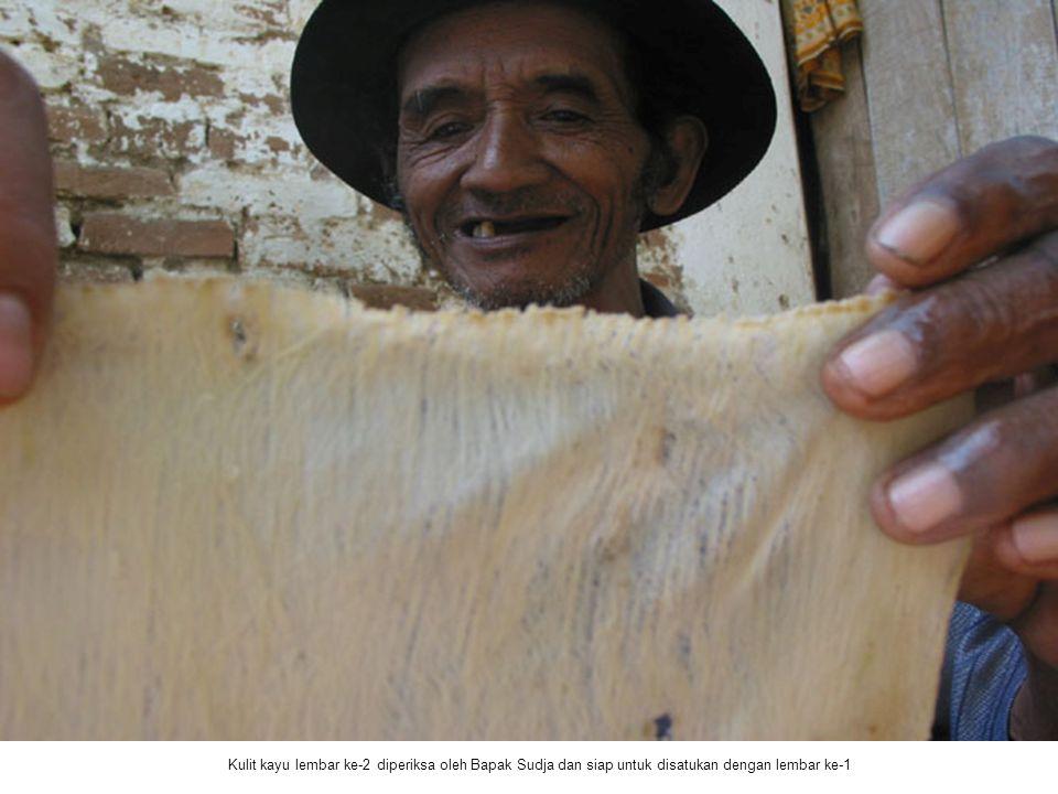 Kulit kayu lembar ke-2 diperiksa oleh Bapak Sudja dan siap untuk disatukan dengan lembar ke-1