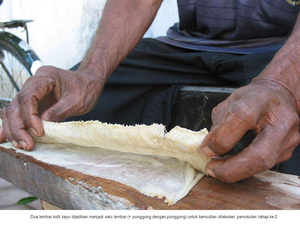 Dua lembar kulit kayu dijadikan menjadi satu lembar (= punggung dengan punggung) untuk kemudian dilakukan pemukulan tahap ke-2