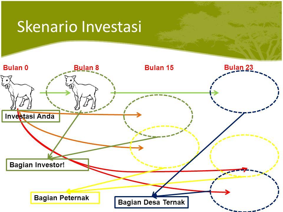 Skenario Investasi Bulan 0Bulan 8Bulan 15 Bulan 23 Investasi Anda Bagian Investor.