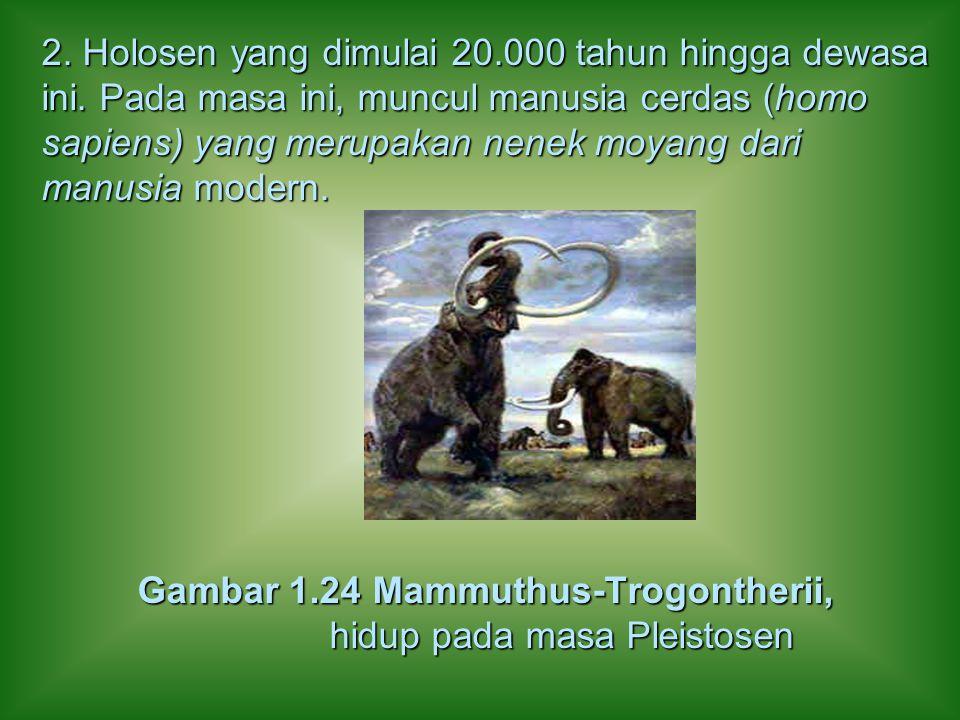 2. Holosen yang dimulai 20.000 tahun hingga dewasa ini. Pada masa ini, muncul manusia cerdas (homo sapiens) yang merupakan nenek moyang dari manusia m
