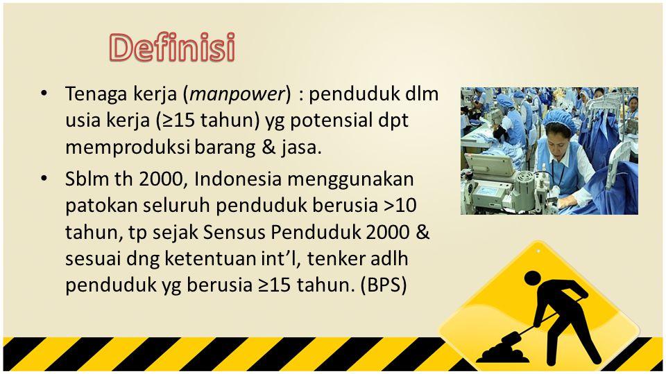 • Tenaga kerja (manpower) : penduduk dlm usia kerja (≥15 tahun) yg potensial dpt memproduksi barang & jasa. • Sblm th 2000, Indonesia menggunakan pato