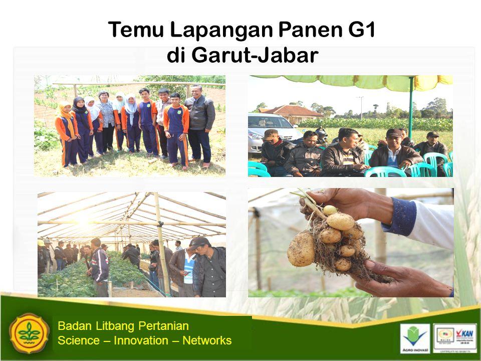 Temu Lapangan Panen G1 di Garut-Jabar Badan Litbang Pertanian Science – Innovation – Networks