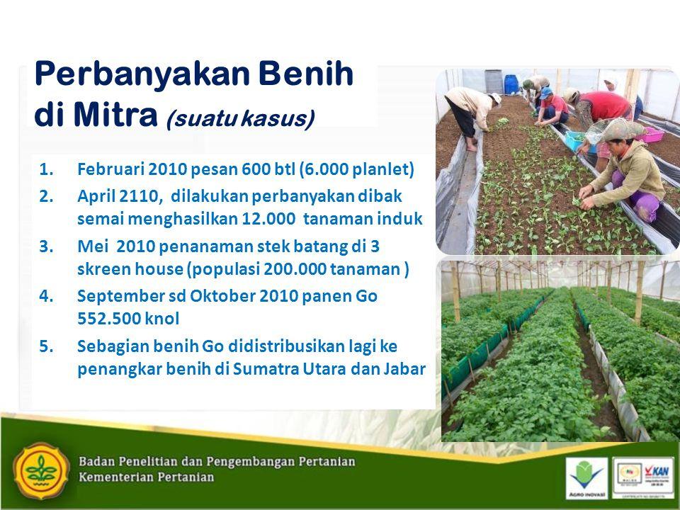 Perbanyakan Benih di Mitra (suatu kasus) 1.Februari 2010 pesan 600 btl (6.000 planlet) 2.April 2110, dilakukan perbanyakan dibak semai menghasilkan 12